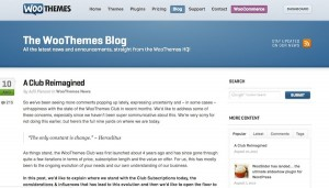 Woo Themes Blog Post Screenshot