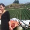 Strawberry Farm in Dongguan Changping